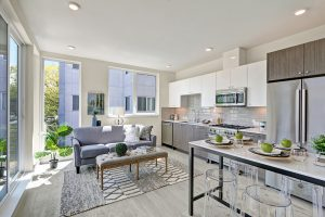 interior photo kitchen living and dining