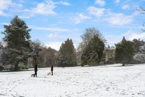 photo of volunteer park